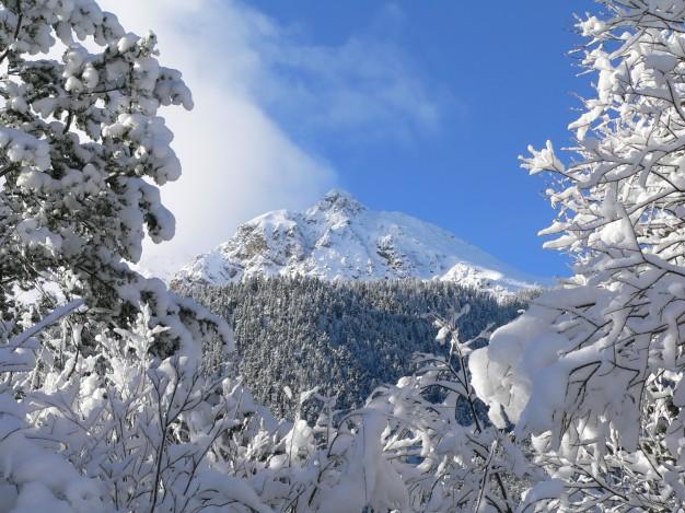 Le sommet des Peygus lors d'une randonnée en raquette avec les accompagnateurs du bureau des guides de Serre-Chevalier, au col de L'Izoard.