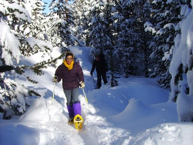 randonnée en raquette dans la poudreuse en direction du col de l'Izoard avec les accompagnateurs du bureau des guides de Serre-Chevalier