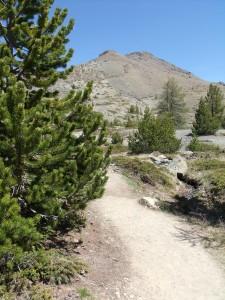 Randonnée géologique en direction du Mont Chenaillet