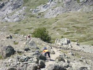 travaux d'altitude réalisés par les guides et accompagnateurs du CBGA sur les sentiers du Massif du Chenaillet.