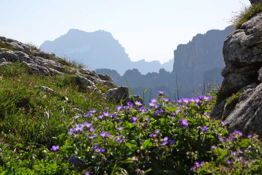 Le Pelmo. Dolomites.