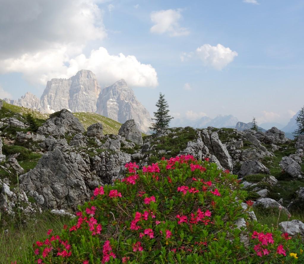 Le Pelmo, vu des alpages de Mondeval. Dolomites.
